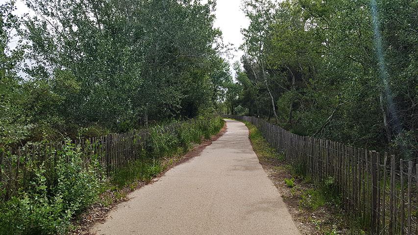 La nouvelle voie verte de Carnon à la Grande Motte