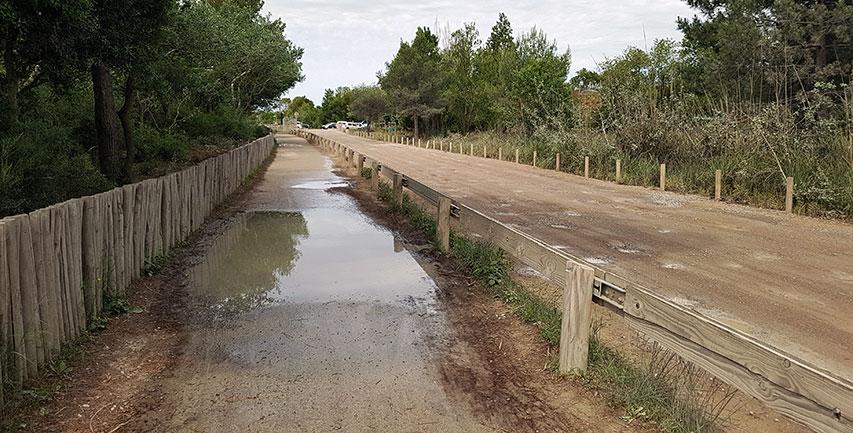 La voie verte du Lido de Carnon à la Grande-Motte